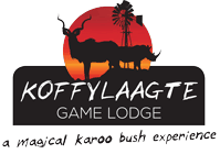 Koffylaagte Game Lodge, Eastern Cape