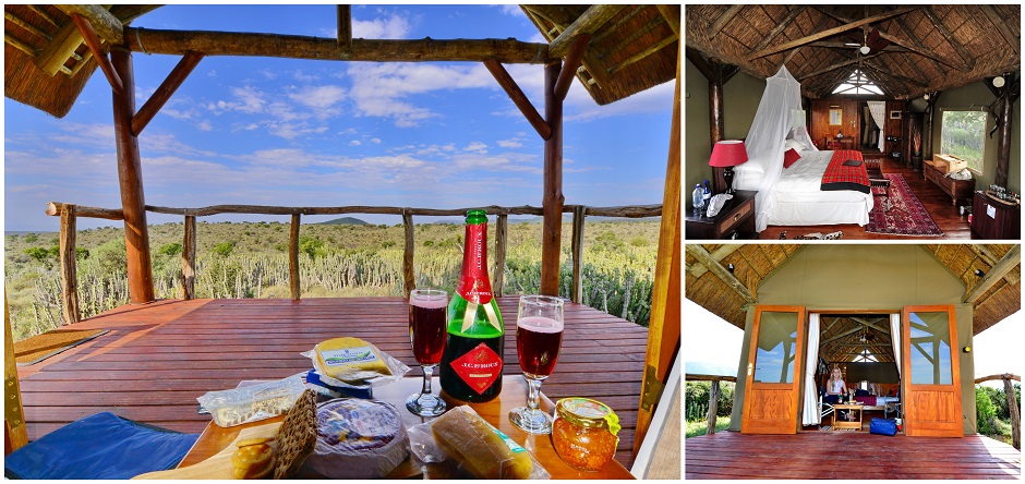 Koffylaagte Tented Camp